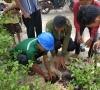 Tim Kukerta Tematik Universitas Riau Lakukan Penanaman 1000 Bibit Pohon di Kampung Pangkalan Pisang